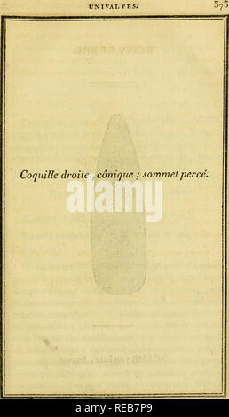 . Conchyliologie systématique, et classification méthodique des coquilles ... Mollusks. UNIVALVES. Please note that these images are extracted from scanned page images that may have been digitally enhanced for readability - coloration and appearance of these illustrations may not perfectly resemble the original work.. Denys de Montfort, Pierre, b. ca. 1768. Paris : F. Schoell - Stock Photo