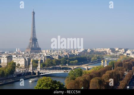 Pont Alexandre III, Alexander III bridge, view over the Seine river and the Eiffel Tower, Paris, France, Europe - Stock Photo