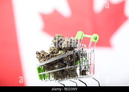 Cannabis for sale in Canada. marijuana on canada flag background - Stock Photo