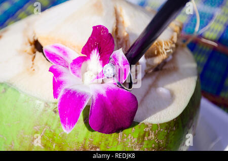 wedding ring on plumeria flower on fresh coconut - Stock Photo