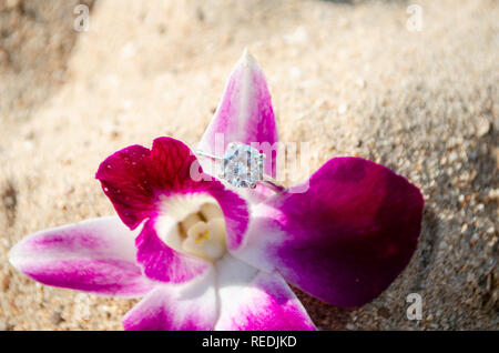 wedding ring on  Plumeria flower in the sand on the beach - Stock Photo