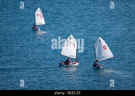 Europe Greece Corfu Ionian Sea competitive sailing in single person sailboats Opti J sailboats - Stock Photo