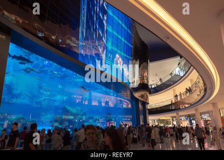 People in front Dubai aquarium in Dubai mall, United Arab Emirates