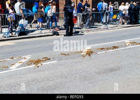 WINDSOR, BERKSHIRE, UNITED KINGDOM - MAY 19, 2018: Horse manure left on central High Street after royal Ascot Landau carriage  - Stock Photo