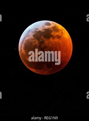 Salida, USA. 20th Jan, 2019. Lunar eclipse, blood red full wolf supermoon over Rocky Mountains; Salida; Colorado; USA Credit: H. Mark Weidman Photography/Alamy Live News - Stock Photo