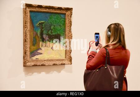 London, UK. 21st January 2019. 'Lane at Vernonnet'Ruelle a Vernonnet.1912-14 Oil paint on canvas.Pierre Bonnard Exhibition,'The Colour of Memory' opening from 23 Jan to 6 May 2019.Tate Modern, London.UK Credit: michael melia/Alamy Live News - Stock Photo
