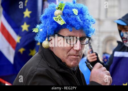 London, UK. 21st January 2019. Anti Brexit Protest.Remainers continued their protests on the day that Theresa May revealed her Brexit Plan B.Houses of Parliament,Westminster,London.UK Credit: michael melia/Alamy Live News - Stock Photo