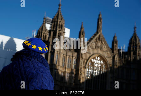 London, UK. 22nd Jan, 2019. An anti-Brexit demonstrator stands outside the Houses of Parliament in London, Britain on Jan. 22, 2019. British Prime Minister Theresa May said on Monday that she would not back a no-deal Brexit or delay the country's departure from the European Union (EU). May made the remarks while addressing lawmakers in the House of Commons to outline her latest proposals for Britain's departure from EU. Credit: Han Yan/Xinhua/Alamy Live News - Stock Photo