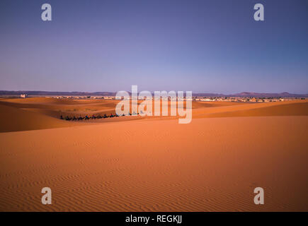 Tourists riding camels during sunrise in famous Merzouga (Sahara) desert, Morocco - Stock Photo