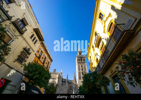 View of the Girala bell tower in Plaza Virgen de Los Reyes from Calle Mateos Gogo in the Santa Cruz district of Seville, Spain - Stock Photo