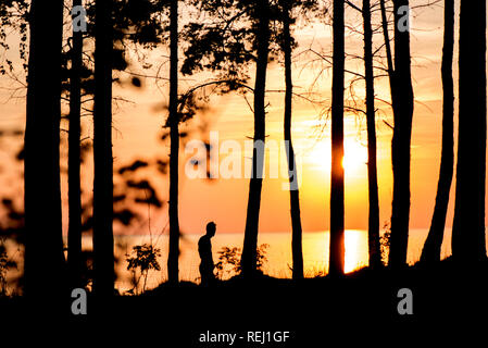 Dark silhouette of young man running in nature park next to beach during bright, warm sunset. Romantic evening in nature. Concept of healthy, active l - Stock Photo