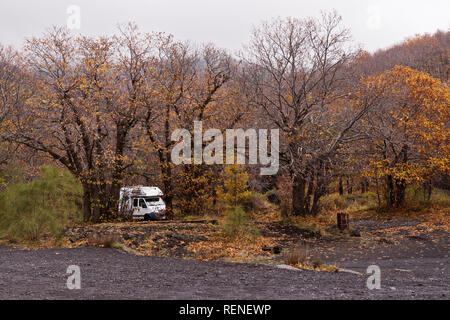 Camping caravan trailer parked hidden in beautiful autumn tree forest in autumn. Hidden camp in serenity place concept - Stock Photo