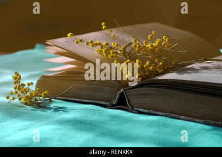 Spring still life -  open old book on the blue tablecloth with yellow mimosa flowers near it.  Dark vintage tones processing. Selective focus at the b - Stock Photo