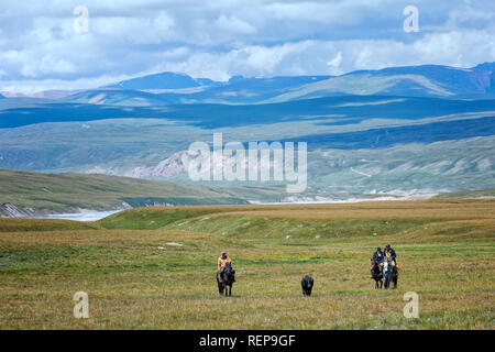 Kyrgyz horsemen conducting an ox, Sary Jaz valley, Issyk Kul region, Kyrgyzstan - Stock Photo