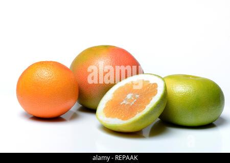 Pomelo, rote Grapefruit, Sweetie (Kreuzung zwischen Pampelmuse und Grapefruit, auch Oroblanco) aufgeschnitten - Stock Photo