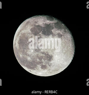 Cumbernauld, North Lanarkshire, UK. 22 January 2019. Waning Gibbous Moon seen one day after the Total Lunar Eclipse also known as the Super Blood Wolf Moon.  The craters are easily seen due to the angle of the sun hitting the side of the moon. Credit: Colin Fisher/Alamy Live News - Stock Photo
