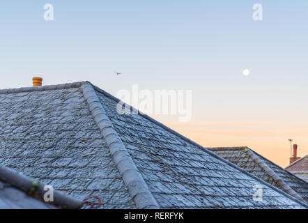Poole, Dorset, UK. 23rd January 2019. Frosty grass and rooftops on a January morning on the south coast of England as the UK enters a cold snap. Credit: Thomas Faull/Alamy Live News - Stock Photo