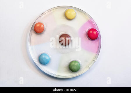 Diffusion experiment using sweets in a petri dish - Stock Photo