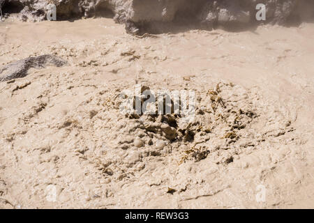 Close up of Mud volcano at the Sulphur works area in Lassen Voclanic National Park, Northern California - Stock Photo