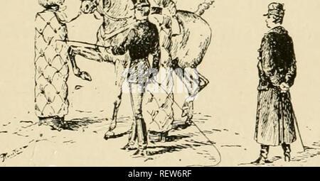. Dressage méthodique du cheval de selle d'aprés les derniers enseignements. Horses; Horses. PREPARER. 65 plètement dressé par ailleurs sans faire ni trot ni pas espagnol, et sans même avoir appris à lever les membres de devant à la volonté du cavalier. Ces différents exercices ne sont donc nullement une partie indispensable du dressage, et Ton peut sans in- convénient s'abstenir de les demander. Mais d'un autre côté le trot espagnol est le plus puis- sant moyen de donner aux mouvements des épaules leur extrême développement. Trot à Extension soutenue. â Quand un cheval prend faci - Stock Photo