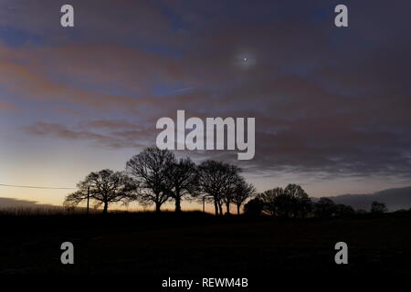 Venus shines through an early morning veil of cloud as dawn rises agianst distant trees Oakley Hampshire - Stock Photo