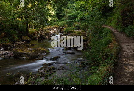Walking along the winding path by the stream - Stock Photo