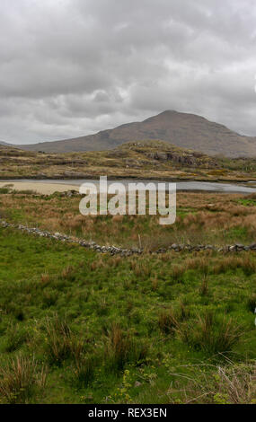 Stone wall in field in west of Ireland with County Mayo countryside and Mweelrea in background. - Stock Photo