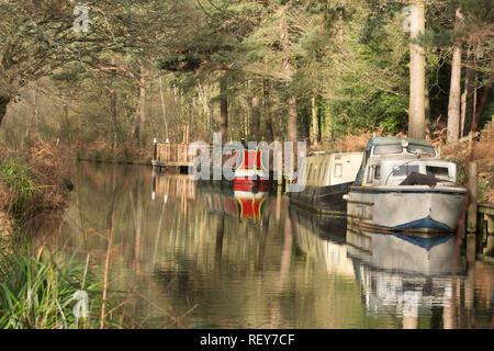 Colourful boats and barges (narrowboats or narrow boats) on the Basingstoke Canal near Mytchett in Surrey, UK - Stock Photo
