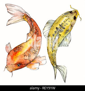 Watercolor aquatic underwater colorful tropical fish set. Red sea and exotic fishes inside: Goldfish. Aquarelle elements for background, texture. Isol - Stock Photo