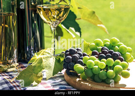 Bunch of fresh grapes next to wine in a bottle and wineglass  on the background of a rustic vineyard and sunlight. - Stock Photo