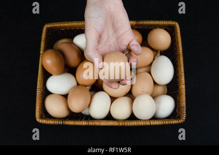 Female hand holding a hen egg taken from a basket on a black background - Stock Photo
