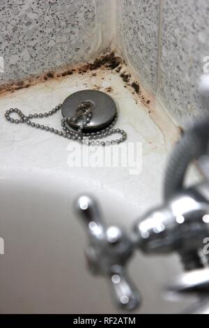 Black mould on the seams of tiles in a bathroom, bathtub - Stock Photo