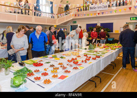 People view fresh homegrown produce (fruit & veg) display in village hall competition - Gardeners' Show, Burley-in-Wharfedale, Yorkshire, England, UK. - Stock Photo