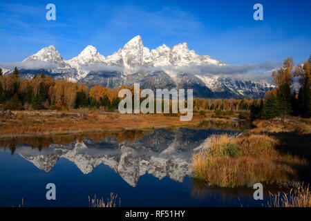 The Tetons are reflected in the clam waters of a beaver pond at Schwabacher's Landing - Stock Photo
