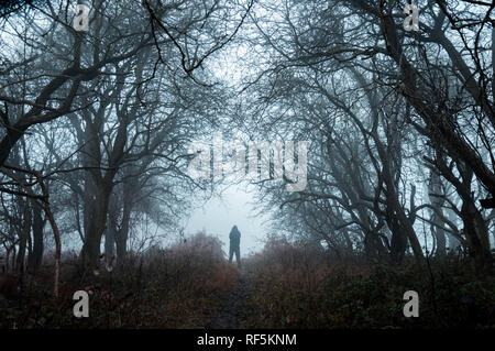 A spooky lone hooded figure in a misty winter forest  with a dark muted edit. - Stock Photo