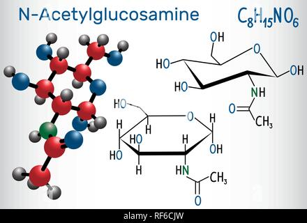 N-Acetylglucosamine (NAG) molecule, is the monomeric unit of the chitin and polymerized with glucuronic acid, it forms hyaluronic acid. Structural che - Stock Photo