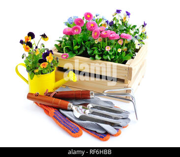 Gardening tools and flowers isolated on white background - Stock Photo