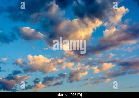Cloudscape with dark and light, medium size clouds (stratocumulus) illuminated by the warm light of the setting sun against a deep blue sky. - Stock Photo