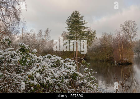 Snow scene Frogmore, Hertfordshire UK