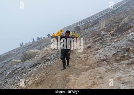 Sulphur carrier climbs out of volcano Kawah Ijen, Ijen crater, Banyuwangi, Java Timur, Indonesia - Stock Photo