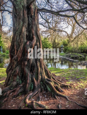 This wonderful old tree can be found in the gardens of Newstead Abbey in Nottinghamshire. It really caught my eye... - Stock Photo