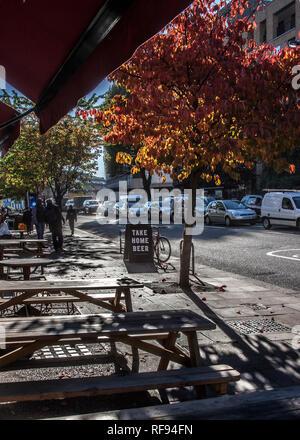 autumn trees on sidewalk next to empty pub benches - Stock Photo