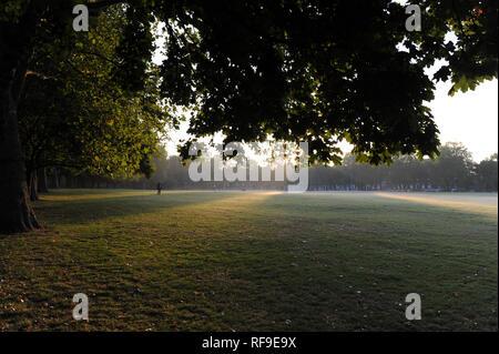 Early morning mist rising on Highbury Fields - Stock Photo