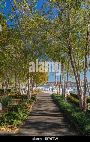 Washington, DC - The Anacostia Riverwalk Trail. - Stock Photo