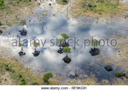 Aerial view of Khwai River, Okavango Delta, Botswana, Africa - Stock Photo