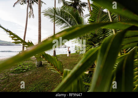 Young couple on the seashore hugging and rubbing noses at each other. The picture was taken through the branches of palm trees.
