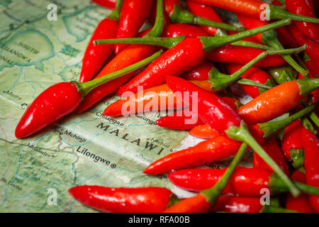Bird's eye chili, Capsicum annuum, also known as piri piri is a common element in cuisine from Malawi. - Stock Photo
