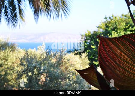 The Sea of Galilee and Capernaum viewed from the Church Of The Beatitudes, Israel - Stock Photo