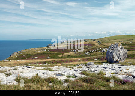 Glacial erratics on the Great Orme headland in North Wales are evidence that the area was covered by a glacier during the last Ice Age. - Stock Photo