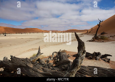 sossusvlei beautiful sunrise landscape of hidden death valley in Namibian desert with blue sky, best place in Namibia, Africa - Stock Photo